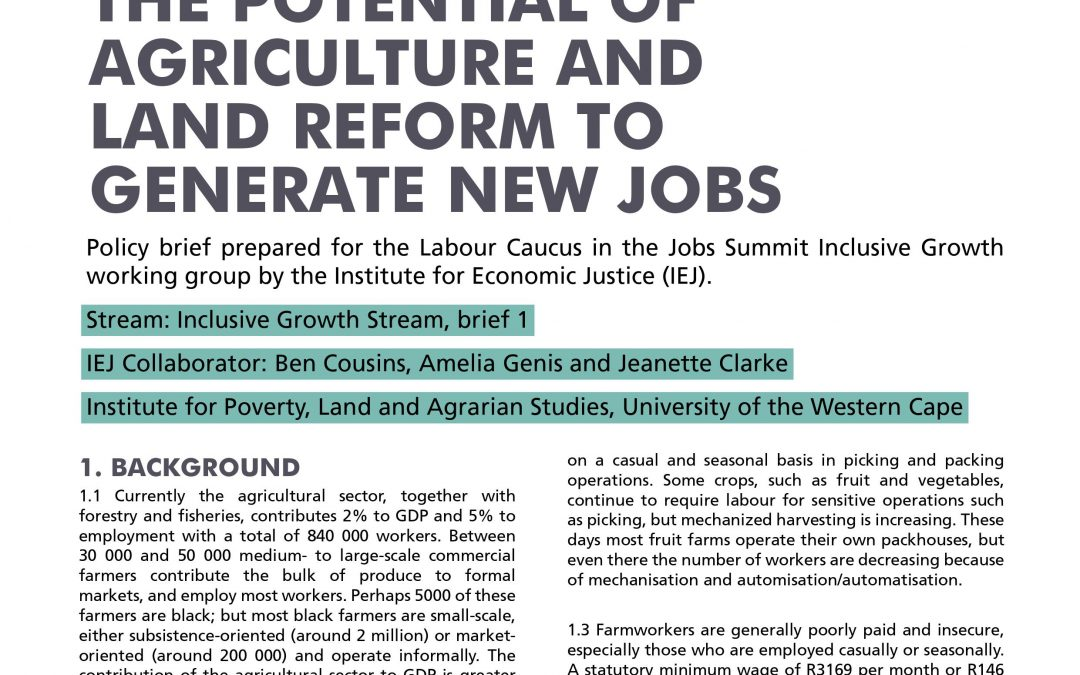 Stream 2 Policy Brief 1: Agriculture and Land Reform