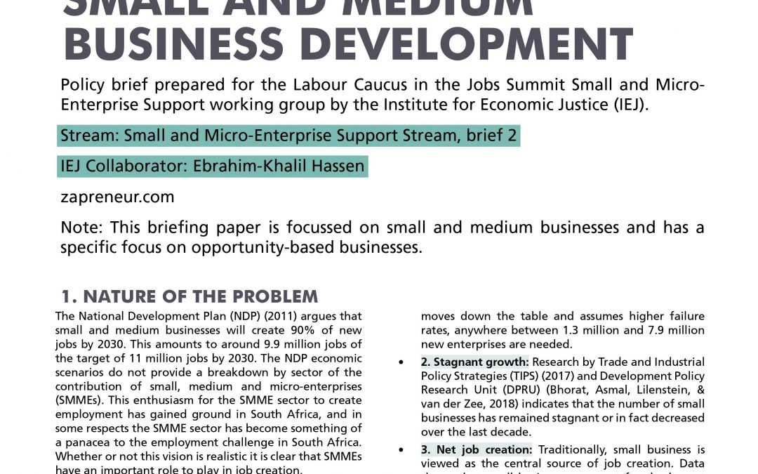Stream 3 Policy Brief 2: Small and Medium Businesses